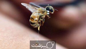 نیش حشرات | پزشکت
