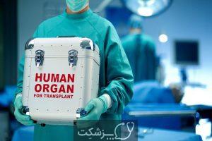 پیوند کبد | پزشکت