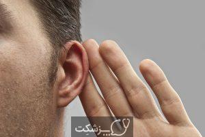 ساختار و عملکرد گوش   پزشکت