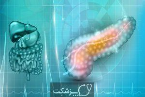 ساختار و عملکرد پانکراس | پزشکت