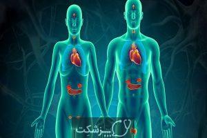 شایع ترین بیماری های سیستم غدد درون ریز | پزشکت