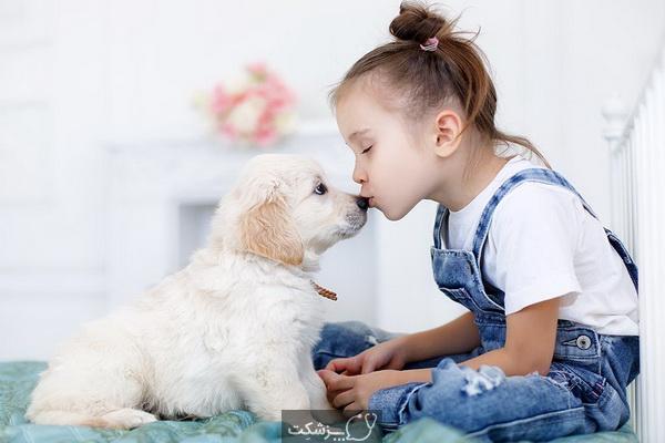 بهترین نوع سگ برای کودکان چیست؟ | پزشکت