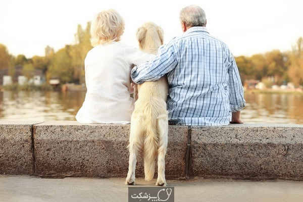حیوانات خانگی برای سالمندان | پزشکت