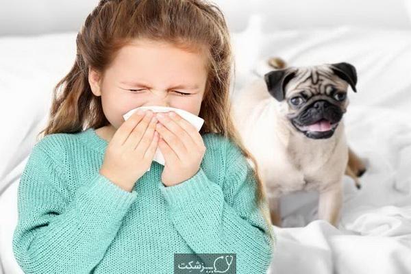 حساسیت به حیوانات | پزشکت