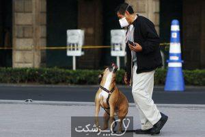 نقش سگ ها در تشخیص کرونا