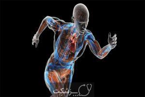 کربوهیدرات ها | پزشکت