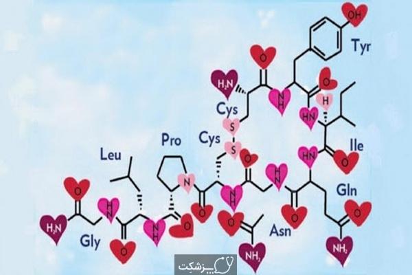 هورمون عشق را بشناسید. | پزشکت