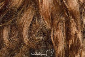 13 درمان خانگی برای موهای وز | پزشکت
