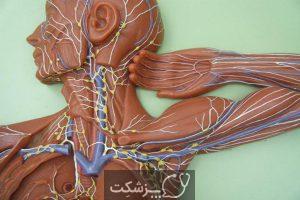 سیستم لنفاوی   پزشکت