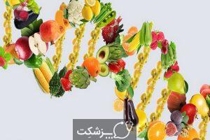 ارتباط بین رژیم غذایی و سرطان چیست؟ | پزشکت