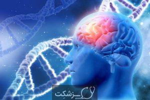 نقص مادرزادی مغز   پزشکت