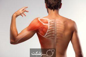 علت درد پستان در مردان چیست؟ | پزشکت