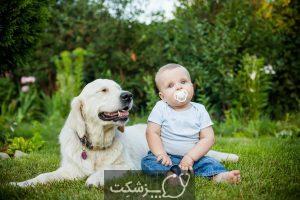 آلرژی سگ در نوزادان   پزشکت
