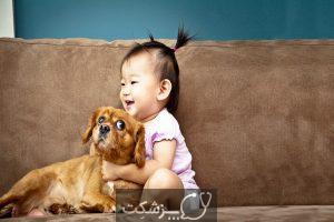 آلرژی سگ در نوزادان | پزشکت