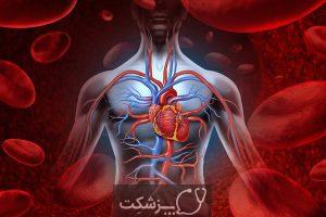 رژیم غذایی برای بهبود گردش خون 3 | پزشکت