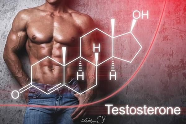 عدم تعادل تستوسترون در مردان و زنان | پزشکت